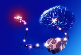 Understand underlying cause of pain - learned neural pathways
